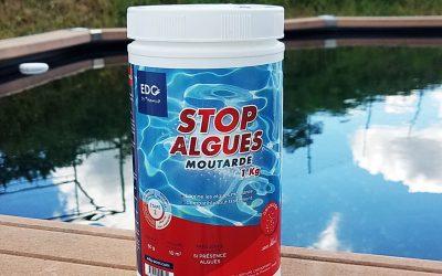 L'algue moutarde piscine, comment s'en débarrasser ?